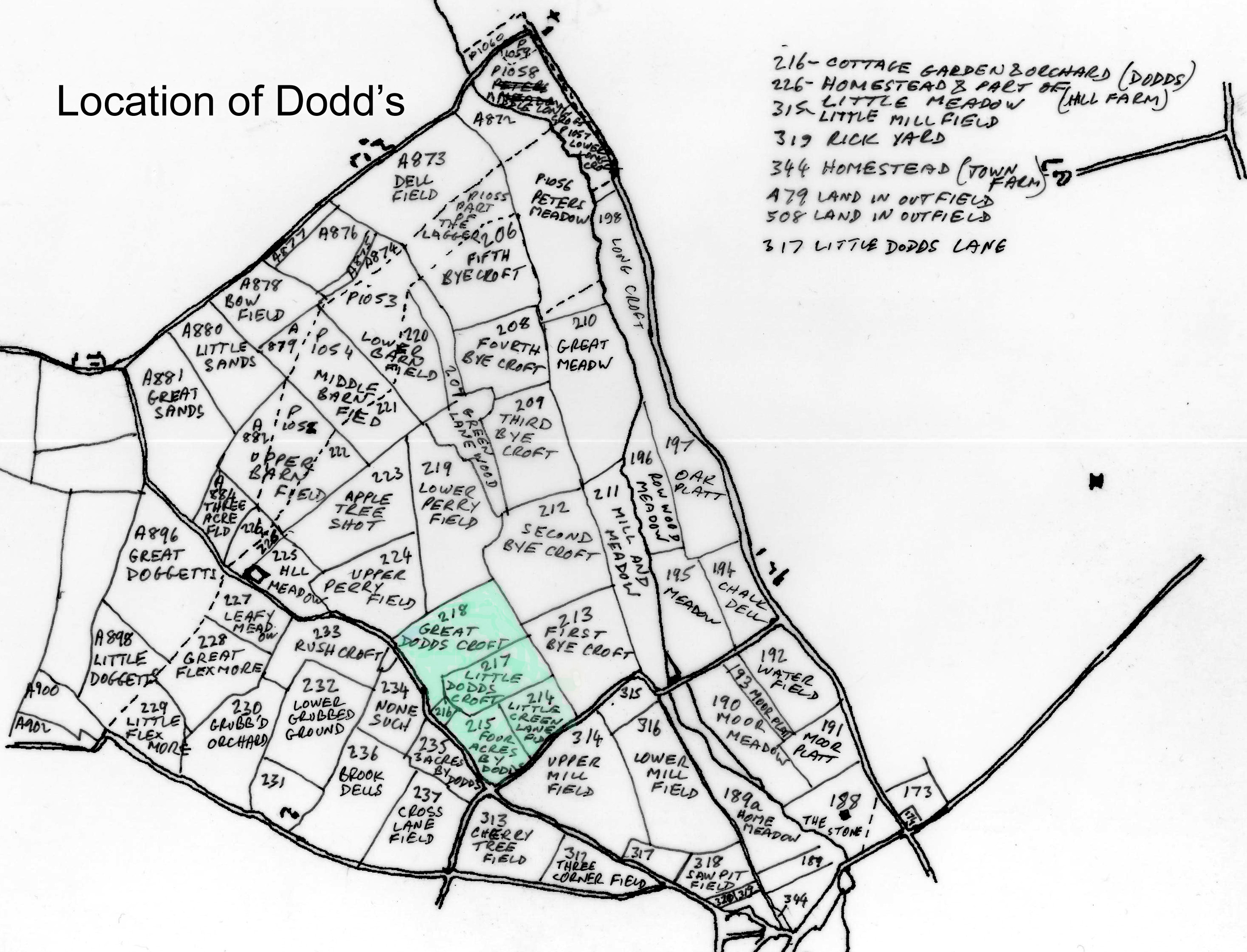 Position of the fields of Dodds